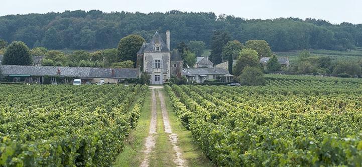 Contact - Chateau De Chaintres